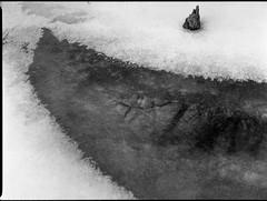 snow, ice, water, reflections, tree stump, French Broad River, Asheville, NC, Mamiya 645 Pro, Arista,Edu 200, Moersch Eco Film Developer, mid January 2018 (steve aimone) Tags: snow ice snowcovered water reflections treestump frenchbroadriver asheville northcarolina mamiya645pro mamiyasekor80mmf28 mamiyaprime primelens 120 film 120film mediumformat blackandwhite monochrome monochromatic landscape winter winterlandscape