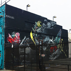 Rosewater by Caratoes (wiredforlego) Tags: graffiti mural streetart urbanart aerosolart publicart artsdistrict losangeles california lax caratoes