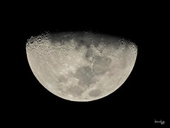 Too nice to pass up (Daniel Y. Go) Tags: moon night nikon nikonp900 p900 philippines superzoom astrophotography lunar nightsky