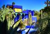 Majorelle Gardens - a place where you could lose yourself for hours! (Nina_Ali) Tags: jacquesmajorelle morocco marrakech africa blue vibrant jardinmajorelle majorellegarden ochrecity artdeco ninaali february2018