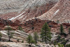 _MG_9133.jpg (nbowmanaz) Tags: zion utah unitedstates mountainstates places