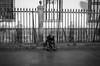 Zócalo, México City. (Christian S. Mata) Tags: ricoh gr grii pentax black white street urban city monochrome mono blanco negro byn bnw bw noir contrast streettog méxico downtown life daily decisive moment 18mm 28mm