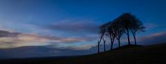 Seven Sisters (simon.mccabe.5) Tags: 6 7 six sisters seven trees nature life explore simonmccabe uk sky black blue colour hill tree