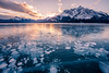 Frozen bubbles under Abraham Lake @ sunset (deirdre.lyttle) Tags: abrahamlake alberta canada canadianrockies clearwatercounty frozenbubbles glaciallake ice nordegg rockymountains winter sunset methane jewels strong winds blowing snow beautiful light