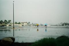 (Casey Lombardo) Tags: rain rainy rainyday umbrella umbrellas longbeach longbeachca expired expiredfilm kodak kodakgold kodakfilm kodakgold200 filmphotography film