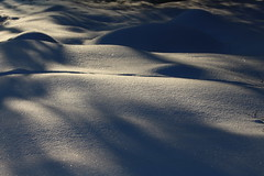 Shadows and snowbanks (irio.jyske) Tags: landscapepic lanscape landscapephotograph landscape landscapes landscapephotos naturepic naturescape naturephotograph naturepictures naturephoto naturephotos nature winter snow sunny cold afternoon beauty canonpic canonphoto canonphotograph canonlens canoncamera canon canonpictures ca