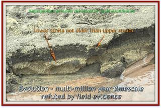 Evolution - field evidence refutes multi-million year timescale.