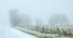old Butte road Idaho (Pattys-photos) Tags: old butte road idaho foggy pattypickett4748gmailcom pattypickett