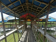 IMG_20180111_142748 (chocoenlaweb.com) Tags: chocó chocoenlaweb quibdó turismo colombia pacífico tutunendo naturaleza bahíasolano nuquí saldefrutas cascada ichó