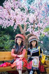 Sapa Vietnam (Dang Vu Lam) Tags: sapa vietnam village cool portrait colourful traditional dress hmong miao culture
