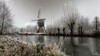 Winter 2016-2017 (Oudje1955) Tags: winter2016 winter cold snow frost ice ambiance oldmasters picturesque schalk canon70d canon1022mm tree water grass sky park field mist windmill