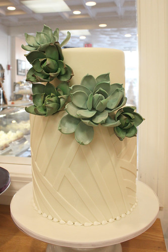 Succulents and Geometric Lines Wedding Cake