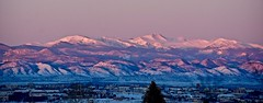 Purple Mountain Majesty:  First Light Over Denver, Colorado (Ginger H Robinson) Tags: purple mountain majesty firstlight denver colorado valley fresh snow cold winter morning city building sky tree sunrise landscape