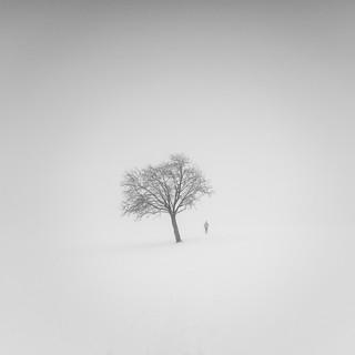 Fog Stories IV