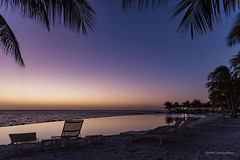 Under a palmtree! (karindebruin) Tags: curacao nederlandseantillen caribbeansea sunset zonsondergang caribbean caribischgebied papagayobeachhotel zwembad swimmingpool palmboom palmtree