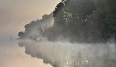 mystery in the mist (Rafa perena) Tags: niebla amanecer rio lago paisaje landscapes scenery colores reflejos reflexes agua mist naturaleza nature fog dawn river lake nikon angular sigma1835