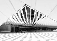Zebra (mimo b. rokket) Tags: modern modernearchitektur modernarchitecture architektur architecture abstract abstrakt abstraktearchitektur abstractarchitecture geometrie geometry formen linien lines monochrom monochrome bw blackandwhite sw schwarzweis lissabon lisboa portugal canonefs1018mmf4556isstm wideangle weitwinkel