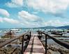 Low Tide (Mikah_Manansala) Tags: analogue film filmforever ilovefilm ishootfilm medium format 120 kodak pentax 6x7 travel seascape beach philippines palawan