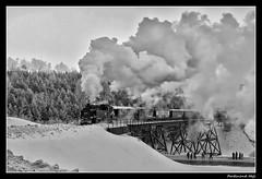 SDG Fichtelbergbahn_BR-99-773_Oberwiesenthal_Erzgebirge_Sachsen_Deutschland (ferdahejl) Tags: sdgfichtelbergbahn br99773 oberwiesenthal erzgebirge sachsen deutschland dslr canondslr canoneos750d bahn eisenbahn schmalspurdampflok schmalspurdampflokomotive narrowgauge railway avoieétroitelocomotiveavapeur voieétroite