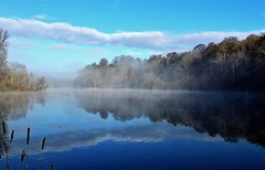 Mist on the Lake (mclean25) Tags: mist morning lake clouds sky reflections water fonthill gifford william beckford estate trees bushes blue