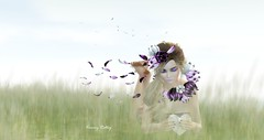 """Beauty is the purest feeling of the soul. Beauty arises when soul is satisfied."" - A. Ray (kimmyridley) Tags: norderney lwposes monso zibska kustom9 thetrunkshow theliaisoncollaborative maitreya lelutka bento bloggage secondlifeblog secondlifebloggers nature beauty secondlifenature secondlifeevents secondlife sexygirl sensual sexylegs izzies barefoot thoughts"