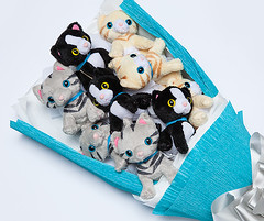 9 Plush Kitten toys Bouquet (mywowstuff) Tags: gifts gadgets cool family friends funny shopping men women kids home