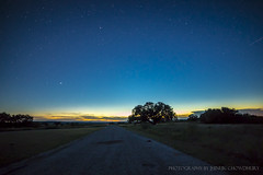 Deep in the Heart of Texas . . (Java Cafe) Tags: nightsky skyscape stars astral horizon sunset evening dusk prairie tree silhouette longexposure