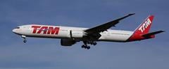 Tubular Belle (crusader752) Tags: latam tam boeing77732wer b777 ptmua runway27l london heathrowairport jetairliner airliner