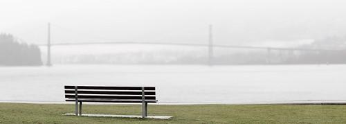 Stanley Park in the rain 2018