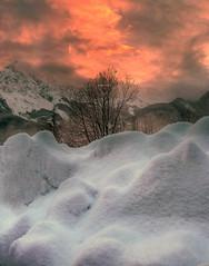 A melting sight (Robyn Hooz) Tags: haiku snow cielo tramonto cadore neve cime albero sky gelo contrasto