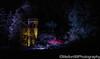 Night Glow (Mellon 99) Tags: mellon99photography longwoodgardens longwood lights davemellon pennsylvania kennettsquare