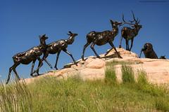 The National Museum of Wildlife Art (Jeff_B.) Tags: wyoming yellowstone jackson jacksonhole grandteton nationalpark america usa museum wildlife statue sculpture sculpturewalk art