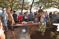 Digging out kalua pork (tama-chan) Tags: imu earthoven hawaii luau kalua pork pig