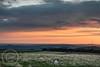 Hills and Moors Aug 28th 2017  (20) (Mark Schofield @ JB Schofield) Tags: meltham huddersfield hills moors moorland landscape emley sunrise yorkshire castle