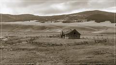 _DSC0998 (Geronimo the Elder) Tags: d200 cabin derelict montana sepia