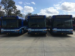 RTS has three and it's waiting for seven more!!!! (Guayabal) Tags: gillig low floor gainesville regional transit system university florida