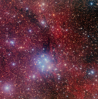 Lynds Dark Nebula 1376-1384