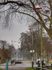 Piet Zwart lampposts (sander_sloots) Tags: pietzwart berlage lampposts lantaarnpaal thehague denhaag lantaarnpalen hogro lightronics armatuur lantern lampadaires marlot straatverlichting publiclighting openbareverlichting luminaires ql induction lamps inductie lampen
