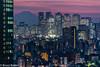 180209 Bunkyo Civic Center v. 2.jpg (Bruce Batten) Tags: night locations urbanscenery fuji subjects honshu cloudssky atmosphericphenomena mountains buildings tokyo japan bunkyōku tōkyōto jp