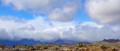 Red Rock Canyon Vista (lorinleecary) Tags: clouds flowers landscapes nevada places redrockcanyon cactus desert minalistlandscape mountains
