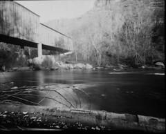 Honey Run Bridge/Butte Creek Paper Negative (fgmachine) Tags: honeyrunbridge chico california buttecreek papernegative ilfordpaper darkroom coveredbridge notherncalifornia