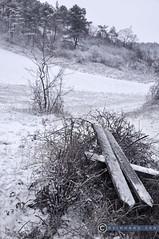 Niederösterreich Weinviertel Buschberg_DSC1246A (reinhard_srb) Tags: niederösterreich weinviertel buschberg alt wegekreuz niederleis winter schnee eis wegweiser holz weissdornbusch kalt kaputt nebel reif bewölkung hochstand wald hügel berg feld acker landschaft gestrüpp