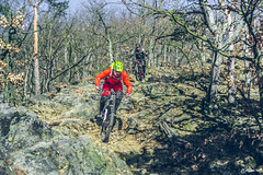 2018.02.25. Borsberg MTB-3 (Michael_Topp) Tags: fahrrad mountainbike himmel licht dresden sony nex