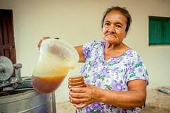 Empresas que cambian vidas: Itatiki (Oxfam en Bolivia) Tags: apicultura ecv emprendimiento seguridadalimentaria seguridad alimentaria medioambiente naturaleza comida agricultura campo grena retrato cara