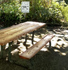 Let's go to a different picnic table ... (JFGryphon) Tags: sign bewareofalligators picnictable baileyshomestead sanibelislandflorida sanibelisland picnic 500fine addinginsulttoinjury park scary pooralligators picnicmood appetitekiller hbm discouraging beware warning achtung attention possibleincarceration unfencedinpond frequentedbyalligators