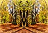 St Kentigern's Cemetery (Michelle O'Connell Photography) Tags: glasgow autumnal autumntrees cemetery graveyard nature michelleoconnellphotography