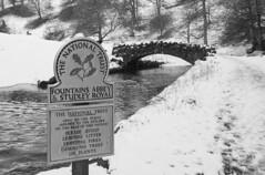 Packhorse Bridge, Studley Royal (Kingsley_Allison) Tags: packhorsebridge packhorse pannier studleyroyal fountainsabbey nikon northyorkshire nikond7200 nationaltrust ripon river walks sevenbridgeswalk yorkshire yorkshiredales harrogate