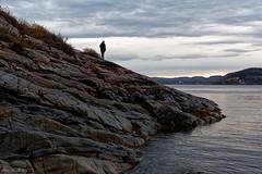 Solitaire (sabathius80) Tags: canada québec nature photo picture canon eos 7d mark ii automne autumn eau mer fleuve solitaire saintlaurent landscape paysage