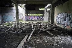(kuuan) Tags: voigtländerheliarf4515mm manualfocus mf voigtländer15mm aspherical f4515mm superwideheliar apsc ricohgxr mmodule bali padanggalak ruins tamanfestivalbali grafiti