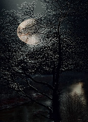 The Moon's Shadow. (Nellie Vin) Tags: moon elliptical light river shadows color photography atmospherical mystical nellievin fineart prints limitededition